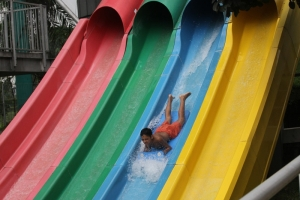 Let's Challenging Your Mental Competition with Whizzard Slide!